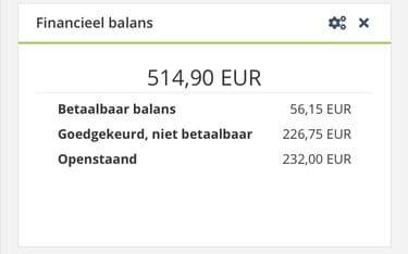 snel 200 euro verdiend als affiliate